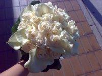 fioriedecori