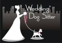 weddingdogsitter